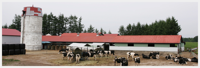 畜産業|十勝について