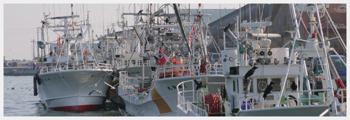 水産業|十勝について