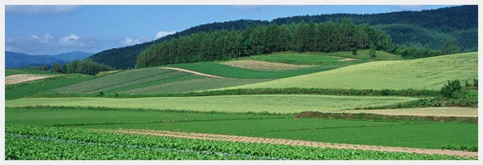 農業ストーリー