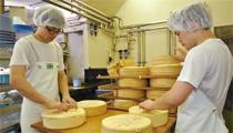 ゆっくりとした歩みが生み出す本物の味 共働学舎新得農場のチーズ